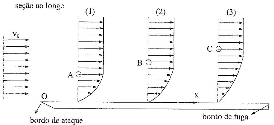 Formação do gradiente de velocidades