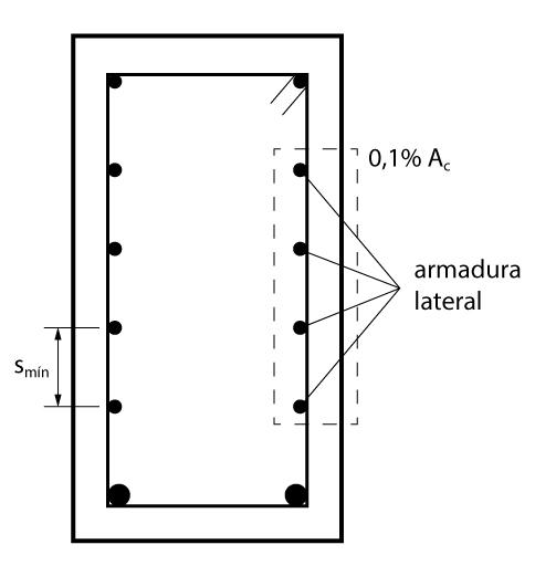 Detalhamento da Armadura Lateral