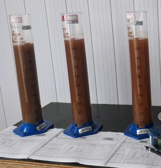 Teste de sedimentação