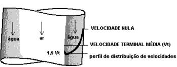 Figura 3 - Perfil de distribuição de velocidades(Fonte: SANTOS, 2009)
